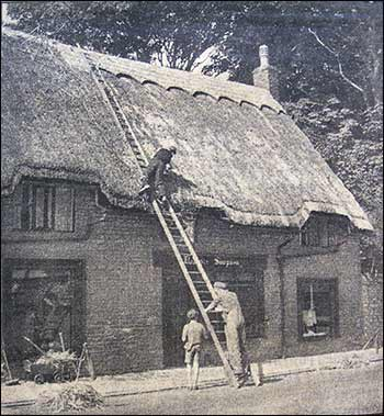 thatching in 1953