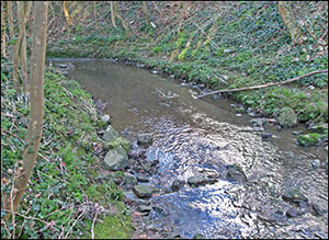 Picture of the brook at Washbrook today