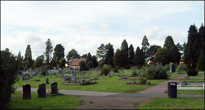 A view of the cemetery, large trees in the distance