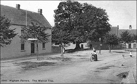 Postcard of the Walnut Tree